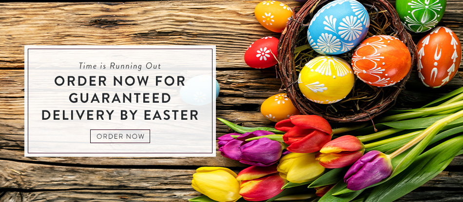 Order Now for Guaranteed Delivery by Easter. Order Now.