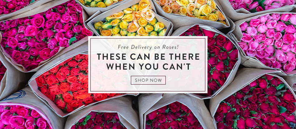 Free Delivery on Roses! These Can Be There When Your Can't!