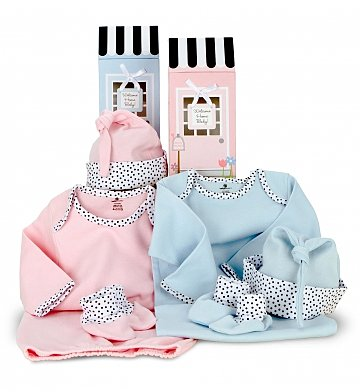Baby Gift Baskets: Special Delivery Gift Set