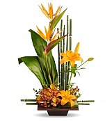 Tropical Flowers: Exotic Grace Arrangement