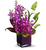 Tropical Flowers: Orchid Opulence Bouquet