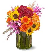 Flower Bouquets: Bold Beauty Bouquet