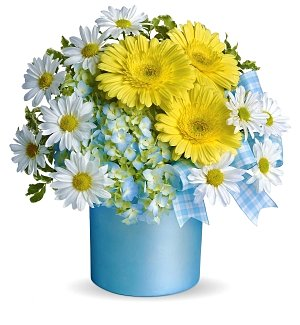 Beautiful Baby Boy Bouquet