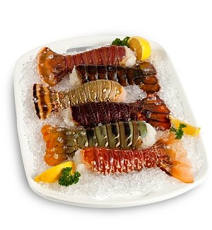 Continental Lobster Tail Sampler with Six Tails