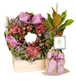 Spring Wreath & Living Magnolia Tree Gift Set