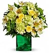 Flower Bouquets: Emerald Elegance St. Patrick's Day Bouquet